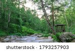 A Fast Mountain Stream In The...