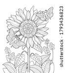 Sunflower Mandala Coloring Page ...