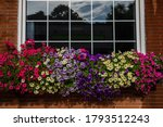Window Box Full Of Colorful...