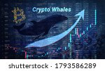 Growth In The Number Of Crypto...