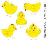 Cute Yellow Chicks