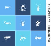 bug icon set and firefly with...