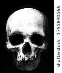 scary horror skull  halloween...   Shutterstock . vector #1793840566