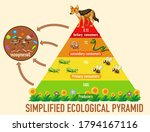 science simplified ecological... | Shutterstock .eps vector #1794167116