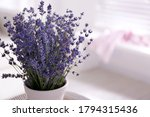 Beautiful Lavender Flowers In...