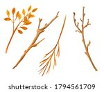 Watercolor Dry Tree Branches...