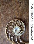 Shell Nautilus Fibonacci...
