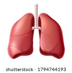 realistic lungs anatomy...   Shutterstock .eps vector #1794744193