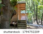 Country Houses With Logs And...