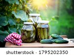 Pickled Cucumbers For Winter...