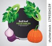 fresh local vegetables...   Shutterstock .eps vector #1795504159