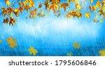 orange fall  leaves and rain ...   Shutterstock . vector #1795606846
