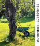 Wheelbarrow And Gardening Tools ...