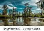 Louisiana Swamp Lands Near New...