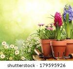 outdoor gardening tools and... | Shutterstock . vector #179595926