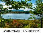 Witch Hole Pond In Acadia...