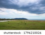 Grasslands And Lakes With...