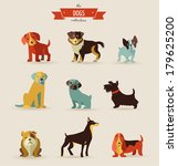 Stock vector dogs vector set of icons and illustrations 179625200