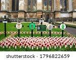 A Display Of Poppies At...
