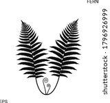 fern silhouette. isolated fern... | Shutterstock .eps vector #1796926999