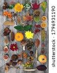 Autumn Nature Composition For...