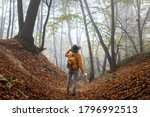 Hiker With Backpack Standing I...