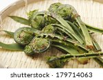 The Foods Of Ostrich Fern