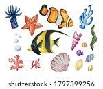 Watercolor Sea Set Of Corals ...