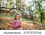 Small girl in autumn forest ...