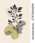 botanical print boho minimalist ... | Shutterstock .eps vector #1797694699