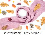 autumn composition. cup of...   Shutterstock . vector #1797734656