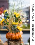 Decorative Pumpkins From The...