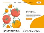vector tomatoes landing page... | Shutterstock .eps vector #1797892423