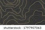 high altitude topographic...   Shutterstock .eps vector #1797907063