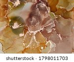 alcohol ink colors translucent. ... | Shutterstock . vector #1798011703