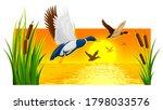 wild ducks soaring from reeds...   Shutterstock . vector #1798033576