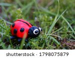 Figure Of A Ladybug In The...