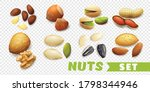 realistic nuts set with walnut...   Shutterstock .eps vector #1798344946