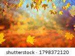 orange fall  leaves  autumn...   Shutterstock . vector #1798372120