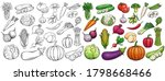 vegetables drawn vector icons... | Shutterstock .eps vector #1798668466