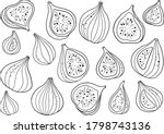 Hand Drawn Vector Figs...