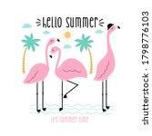 flamingos vector illustration... | Shutterstock .eps vector #1798776103