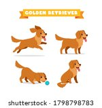 cute golden retriever dog... | Shutterstock .eps vector #1798798783