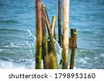 Sticks Washed Up On Beach...