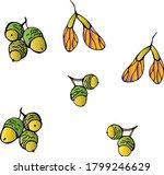 Acorns From Oak  Painted Acorns ...