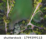 Top Down View Of Trees  Pond...
