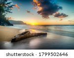 Driftwood On Beach At Sunset O...