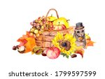 Hamster In Hat With Nut  Basket ...