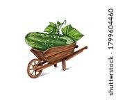 hand drawn farmer wooden cart... | Shutterstock .eps vector #1799604460