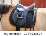 Old Leather Saddles Horse With...